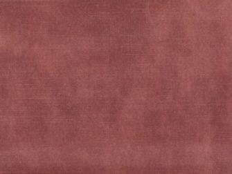 Velvet adore - Blush
